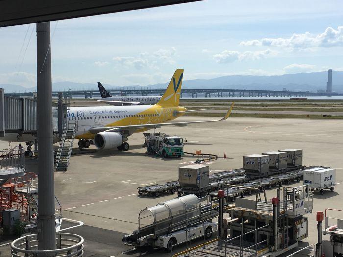 初の奄美大島へ夏旅行