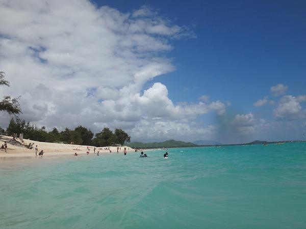 ウミガメに出会ったinカイルアビーチ@ハワイ(その4)