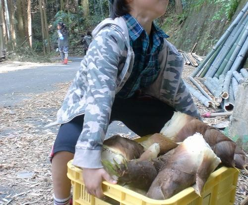 たけのこ掘り@奈良、もらいもの写真